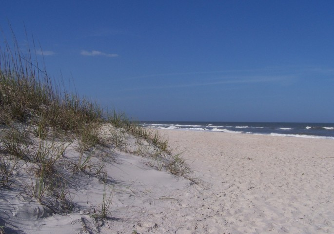 Amelia Surf & Racquet Dune